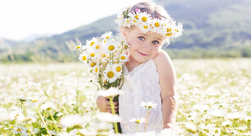 A Camomila, é uma erva mundialmente conhecida pelo seus efeitos calmantes. Sem efeitos colaterais, a Camomila trás muitos benéficos, inclusive para as crianças.